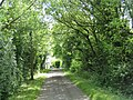 The road to Pumpkin Hall - geograph.org.uk - 177962.jpg