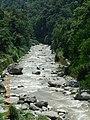 The tributaries of teesta at sikkim.jpg