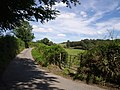 Thornbury Mill Cross - geograph.org.uk - 512862.jpg