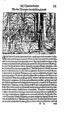 Thurnierbuch (Rüxner) 026.png