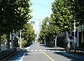 Tokyo-r431-Sasazuka.JPG