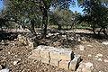 Tombstones in Hawsha cemetery.JPG