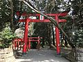 Toriis of Gosho Inari Shrine in Miyazaki Shrine.jpg