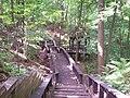 Towners Woods gazebo.jpg