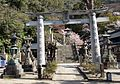Tozan Shrine 09 April 2011 04.jpg