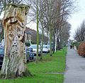Tree sculpture in Marlborough Avenue, Hull - geograph.org.uk - 684690.jpg