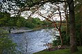 Trees and Tummel - geograph.org.uk - 1340047.jpg