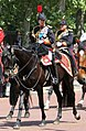 Trooping the Colour 2018 (11).jpg
