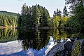 Trout Lake Reflection 2 (15330728137).jpg