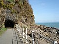 Tunnel at Coppet Hall Point - geograph.org.uk - 461264.jpg