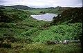 Turraman Loch - geograph.org.uk - 307527.jpg
