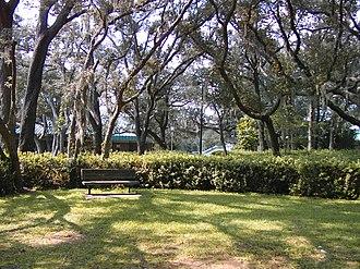 University of West Florida - Foliage at UWF