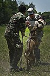 US and Philippine K-9 forces train together during Balikatan 2012 120419-F-MQ656-360.jpg