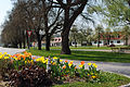 Ueb dorfplatz im Frühjahr.jpg