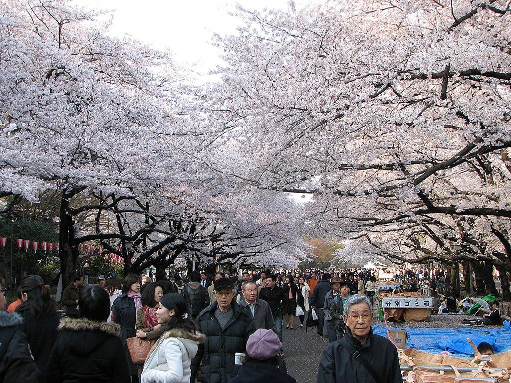 guia de viaje japon gratis