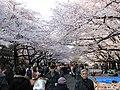 Ueno park.jpg