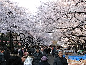 Image illustrative de l'article Parc d'Ueno