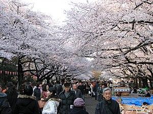 Ueno Park - Image: Ueno park