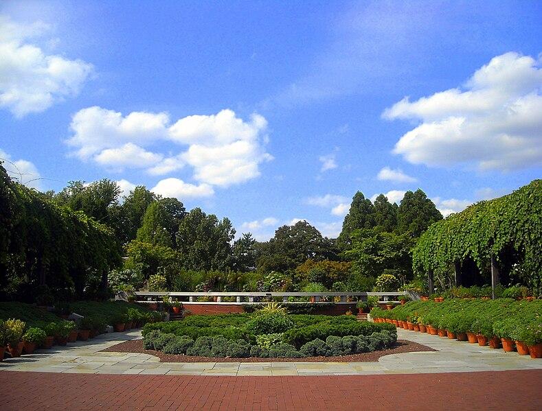 United States National Arboretum - garden