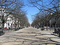 Unter den Linden looking E, Mar 2011.jpg