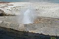 Upper Geyser Basin 2.jpg
