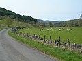 Upper Girvan Valley - geograph.org.uk - 416748.jpg
