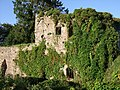 Usk Castle - geograph.org.uk - 1768029.jpg