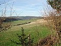 Valley between Marcle Hill and Busland Wood - geograph.org.uk - 450319.jpg