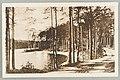 Vanha harjutie, Pöllänlampi, Palovartijan mäki, Mustalahti, 1890–1901s PK0375.jpg