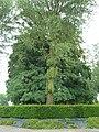 Verlaine-Tumulus van Verlaine (2).JPG