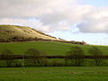 View east towards Linton Hill from Abbotsbury Swannery car park - geograph.org.uk - 25092.jpg