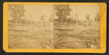 View of a log raft in the foreground with a building far behind, Dubuque, Iowa, by Root, Samuel, 1819-1889.png