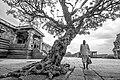 Vijay vittal Temple Tree Hampi.jpg