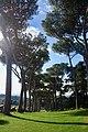 Villa Barberini Pontifical Gardens, Castel Gandolfo (31863767857).jpg
