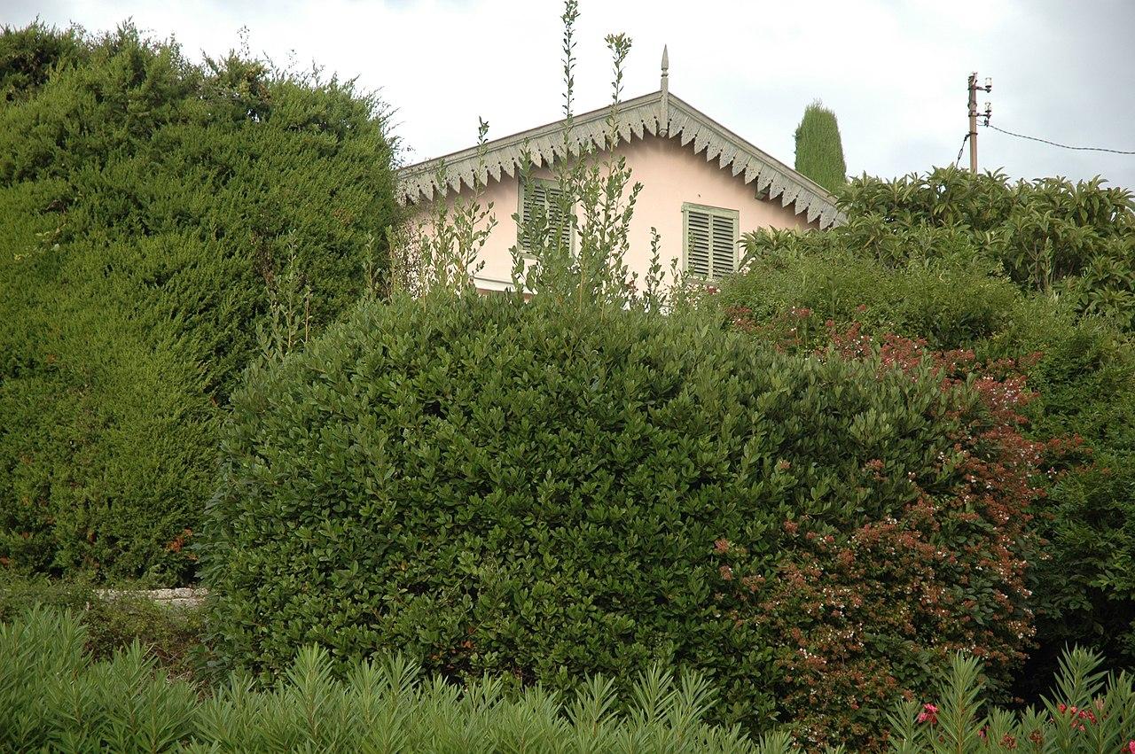 File villa le bosquet du peintre pierre bonnard maison - Abonnement maison et jardin ...