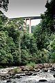 Vista da Rodovia dos Imigrantes sobre o Rio Pilões.jpg