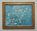 WLANL - Pachango - Amandelbloesem, Vincent van Gogh (1890).jpg