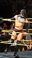 WWE NXT 2015-03-28 00-48-01 ILCE-6000 4087 DxO (17340997076).jpg