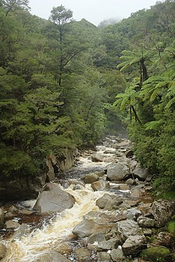 Wainui River on a rainy day.jpg