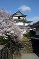 Wakayama Castle01-R.jpg
