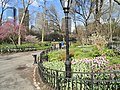 Walking paths in Central Park - DSC05937.JPG