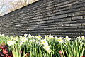 Wall and flowers, Stadsbiblioteket i Lyngby, 2016-04-16.JPG