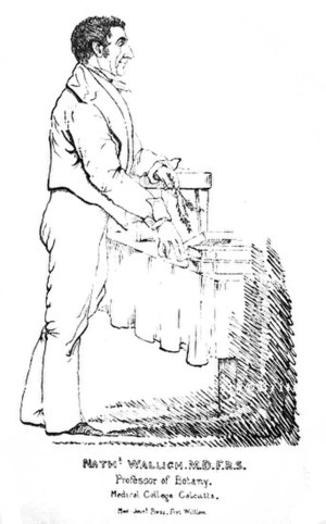 Nathaniel Wallich - Portrait by Colesworthy Grant