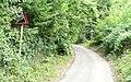 Warren Lane - Steep Hill 20^ - geograph.org.uk - 1430794.jpg