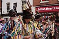 Warwick Folk Festival (28665844031).jpg
