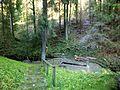 Wassertretbecken Kropfbachtal - panoramio.jpg