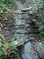 Waterfall in Schenley Park (1108806762).jpg