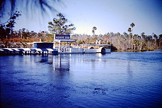 Weeki Wachee Springs - slide photo of Weeki Wachee Springs sometime in the 1950s