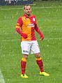 WesleySneijder2013.JPG