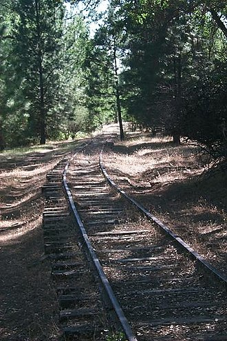 West Side Lumber Company railway - The lower section of the Railway in 2003